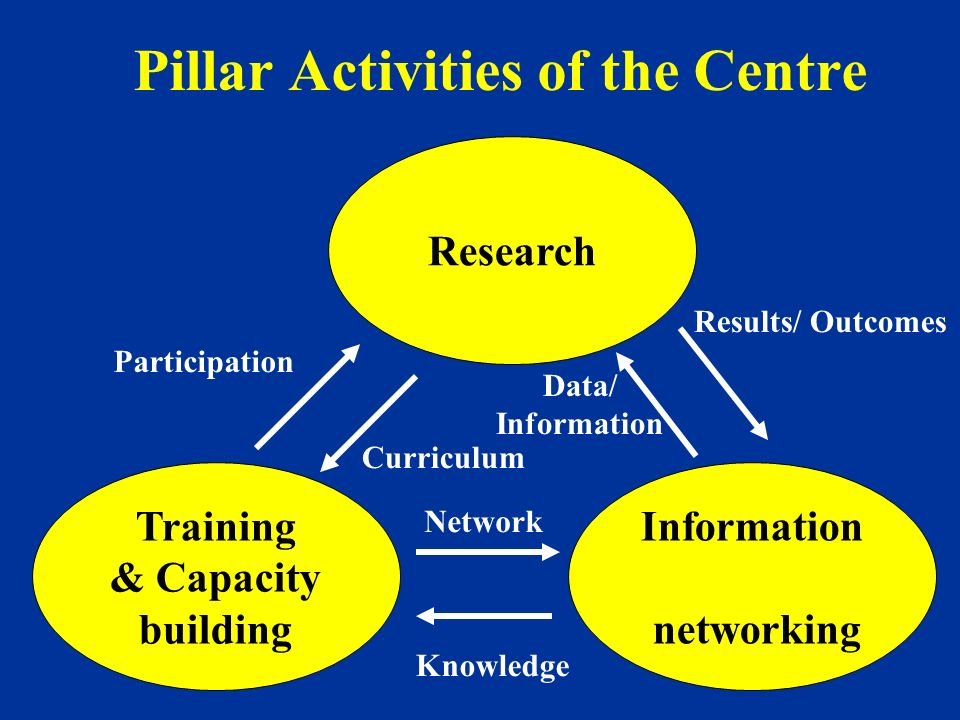 Pillar Activities of the Centre Research Training & Capacity building Information networking Curriculum Results/ Outcomes Data/ Information Network Kn