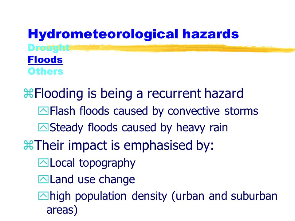 Hydrometeorological hazards Drought Floods Others zFlooding is being a recurrent hazard yFlash floods caused by convective storms ySteady floods caused by heavy rain zTheir impact is emphasised by: yLocal topography yLand use change yhigh population density (urban and suburban areas)
