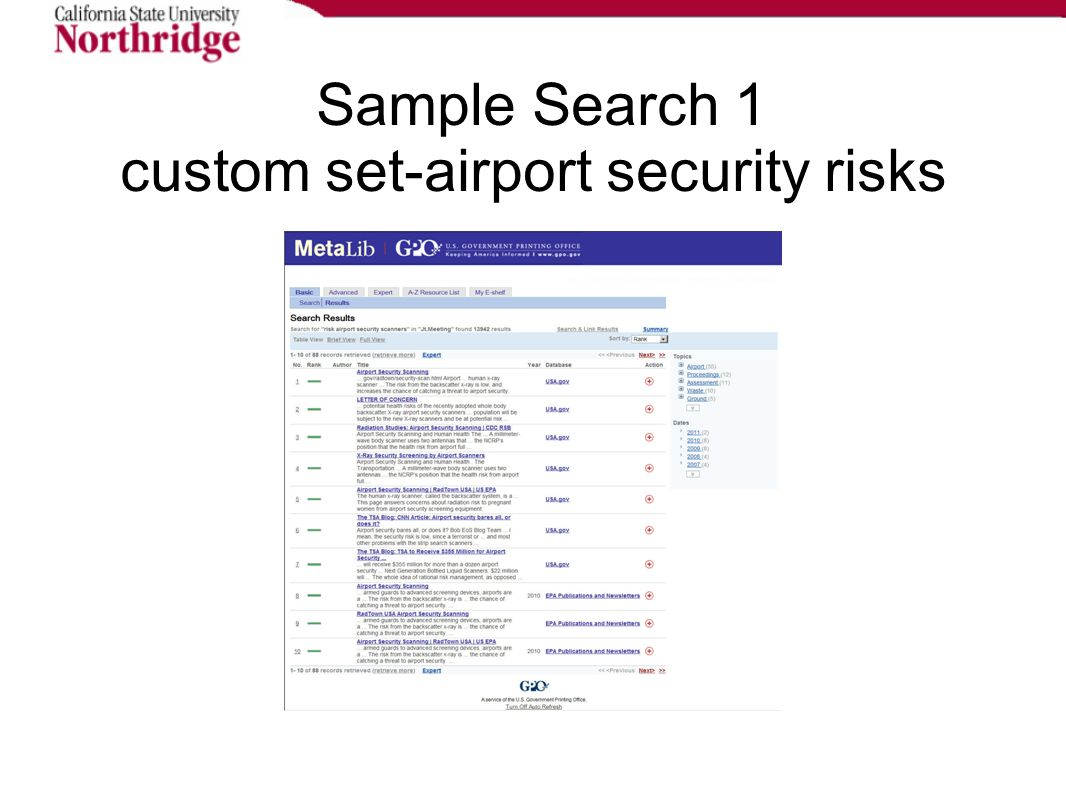 Sample Search 1 custom set-airport security risks