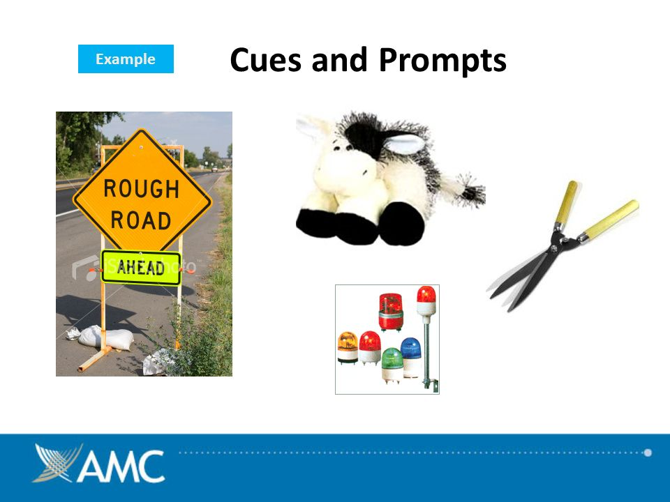 Example Cues and Prompts