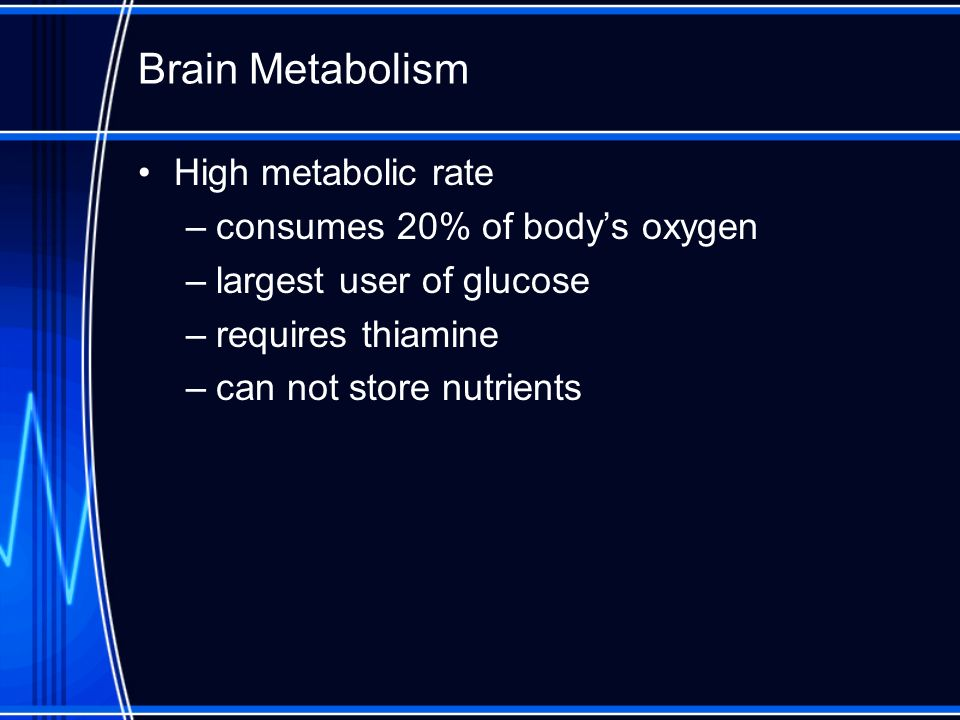 Brain Metabolism High metabolic rate –consumes 20% of bodys oxygen –largest user of glucose –requires thiamine –can not store nutrients
