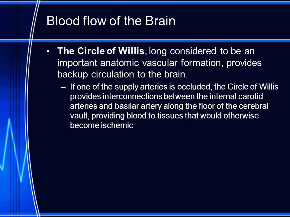 Blood flow of the Brain The Circle of Willis, long considered to be an important anatomic vascular formation, provides backup circulation to the brain