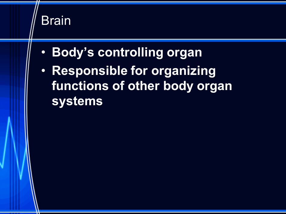 Brain Bodys controlling organ Responsible for organizing functions of other body organ systems