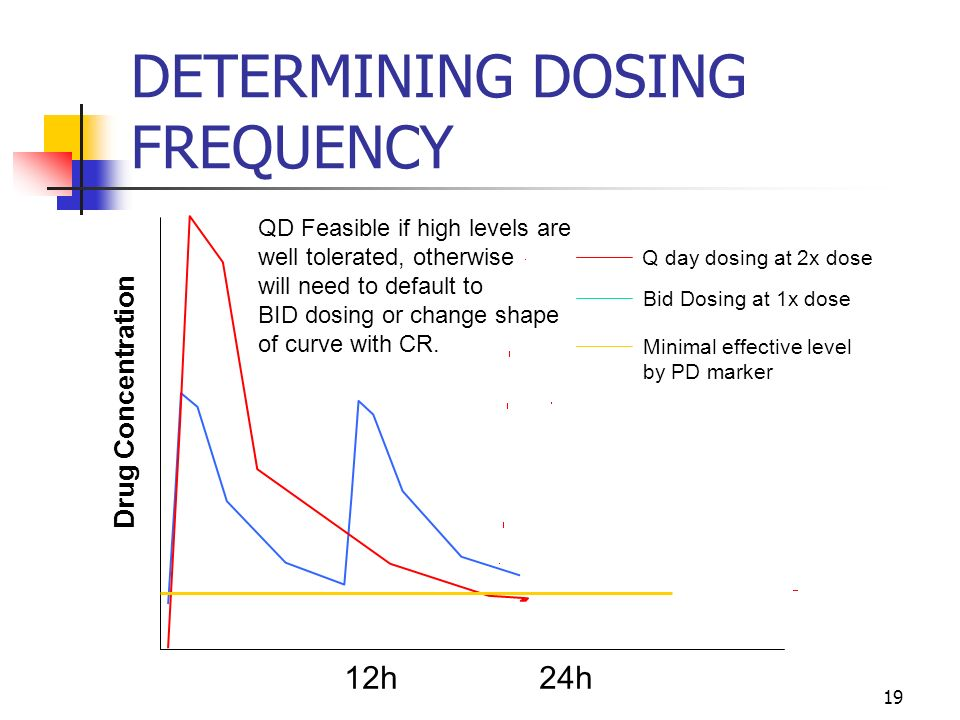 19 Q day dosing at 2x dose Bid Dosing at 1x dose Minimal effective level by PD marker 12h 24h Drug Concentration QD Feasible if high levels are well t