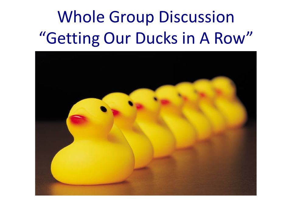 Whole Group Discussion Getting Our Ducks in A Row