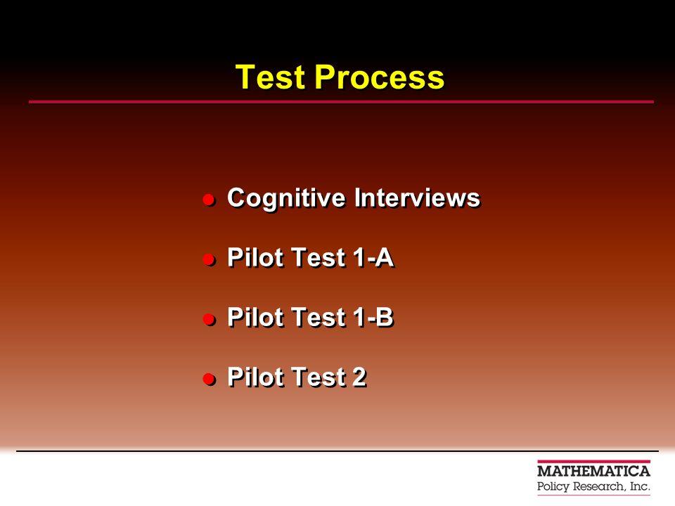 Test Process Cognitive Interviews Pilot Test 1-A Pilot Test 1-B Pilot Test 2 Cognitive Interviews Pilot Test 1-A Pilot Test 1-B Pilot Test 2