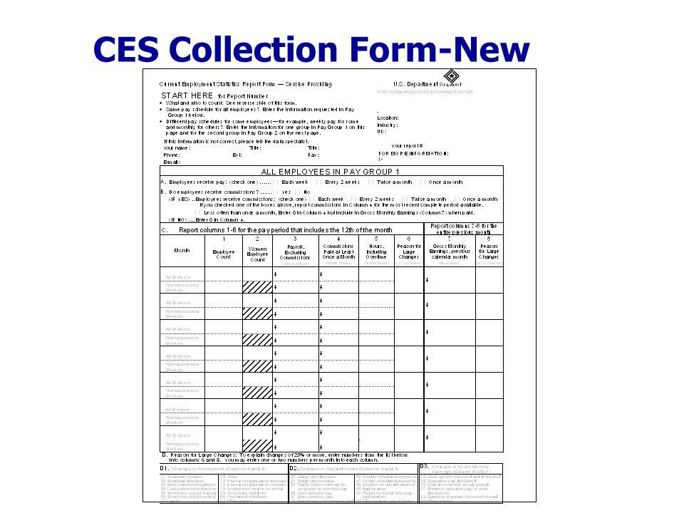 CES Collection Form-New