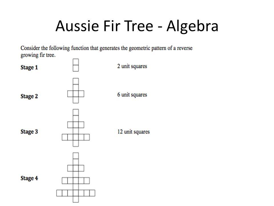 Aussie Fir Tree - Algebra