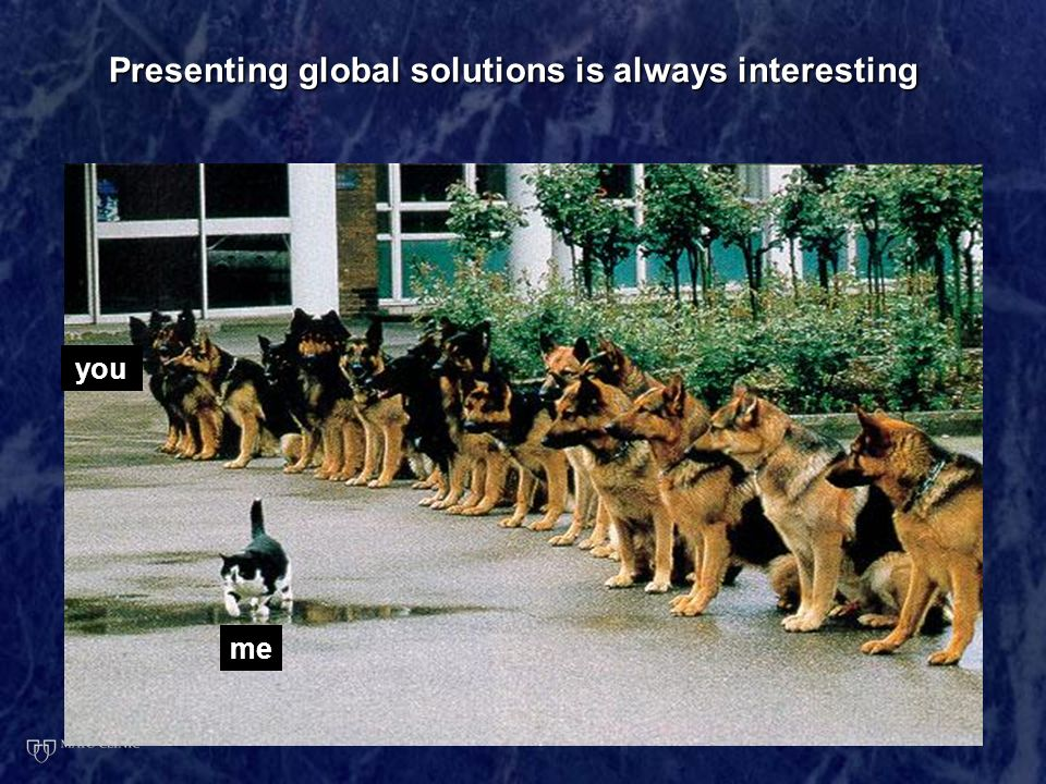 Presenting global solutions is always interesting me you