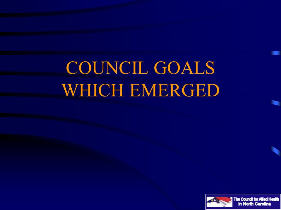 COUNCIL GOALS WHICH EMERGED
