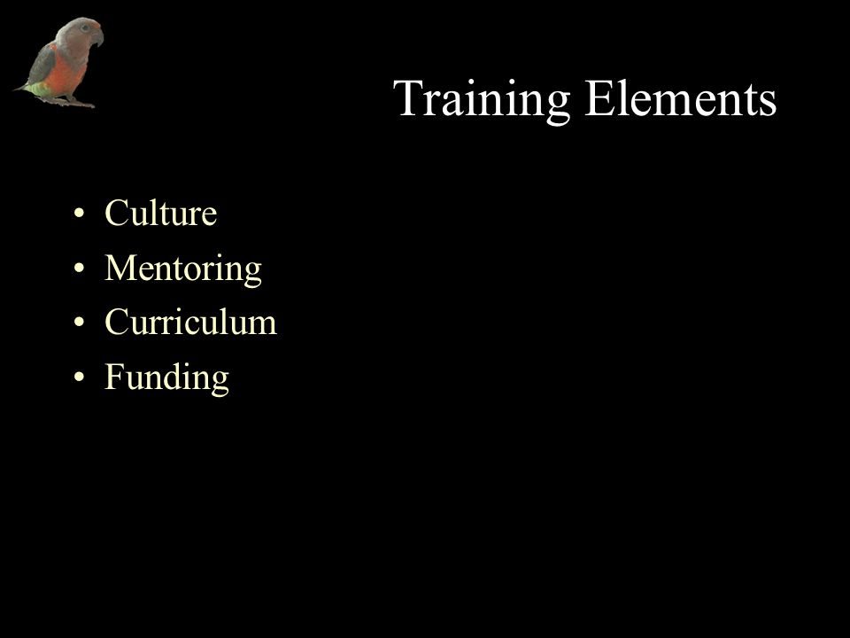 Training Elements Culture Mentoring Curriculum Funding