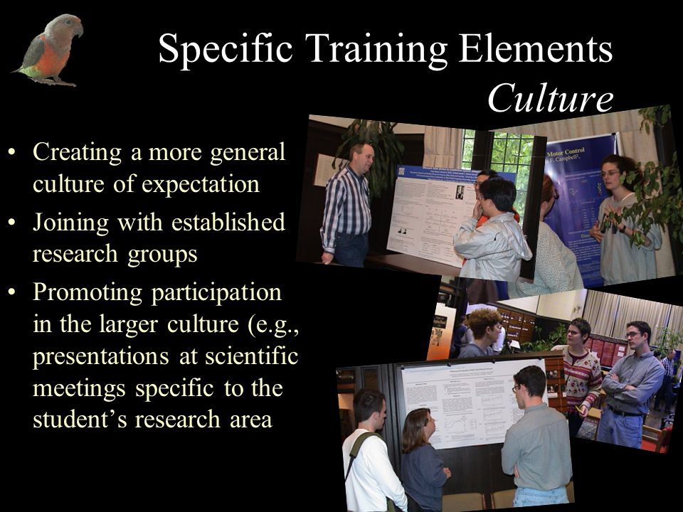 Specific Training Elements Culture Creating a more general culture of expectation Joining with established research groups Promoting participation in