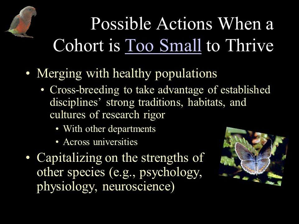Possible Actions When a Cohort is Too Small to ThriveToo Small Merging with healthy populations Cross-breeding to take advantage of established discip
