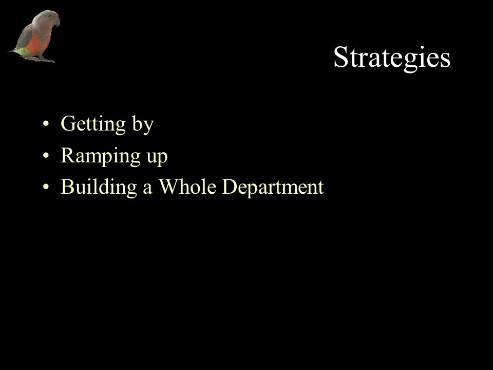 Strategies Getting by Ramping up Building a Whole Department