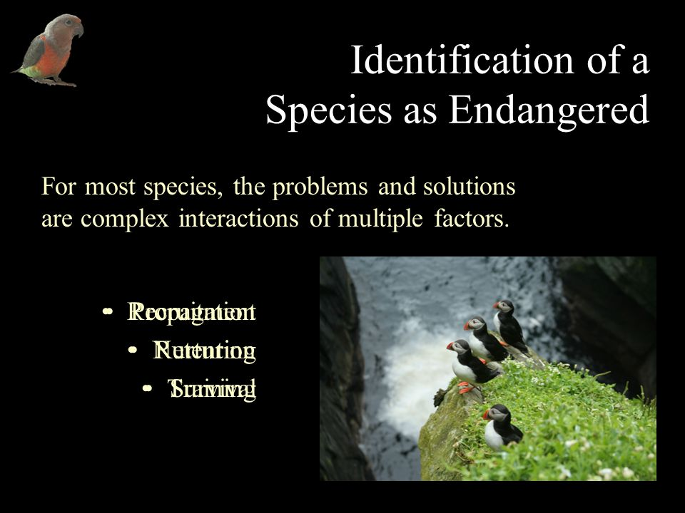 Identification of a Species as Endangered For most species, the problems and solutions are complex interactions of multiple factors.