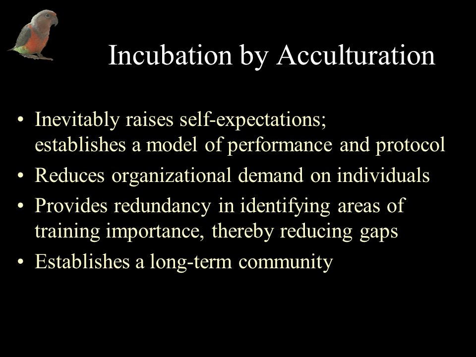 Incubation by Acculturation Inevitably raises self-expectations; establishes a model of performance and protocol Reduces organizational demand on individuals Provides redundancy in identifying areas of training importance, thereby reducing gaps Establishes a long-term community