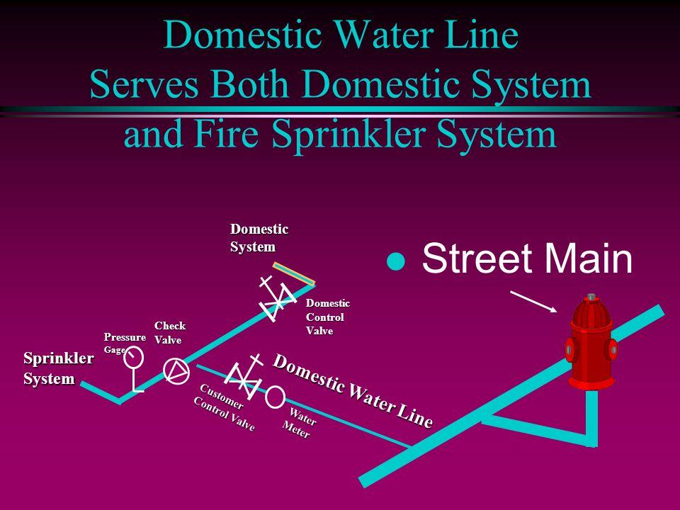 Domestic Water Line Serves Both Domestic System and Fire Sprinkler SystemSprinklerSystem l Street Main Domestic Water Line PressureGage CheckValve Dom