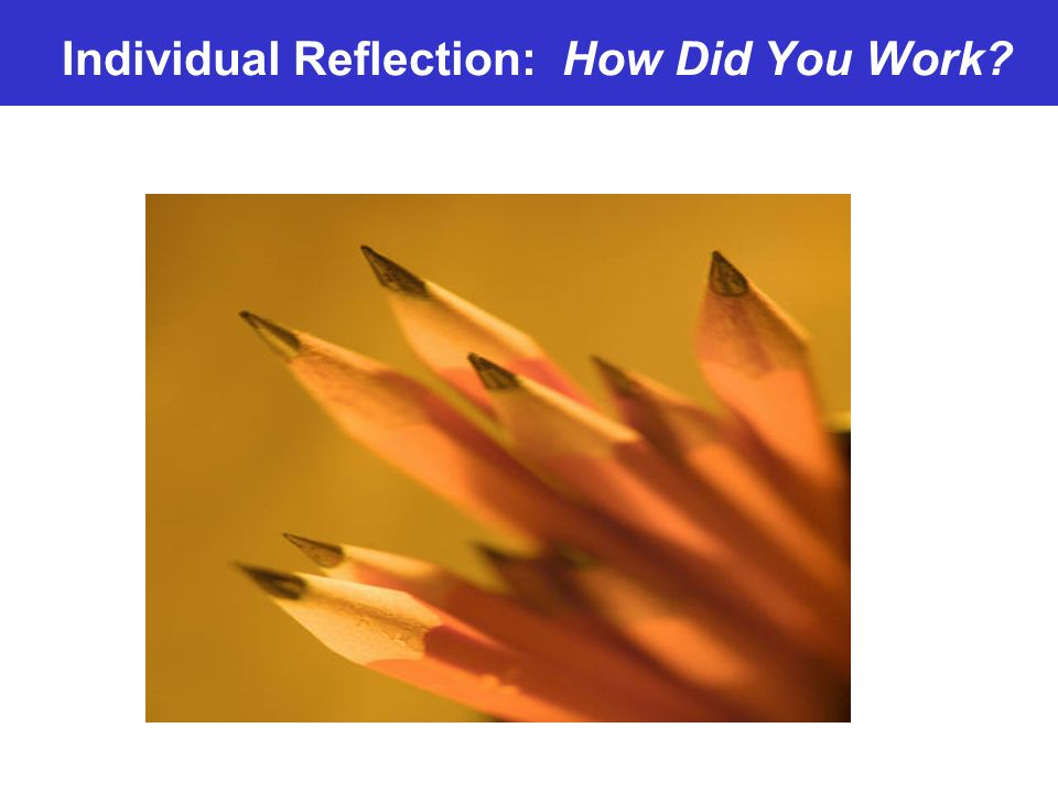 Individual Reflection: How Did You Work
