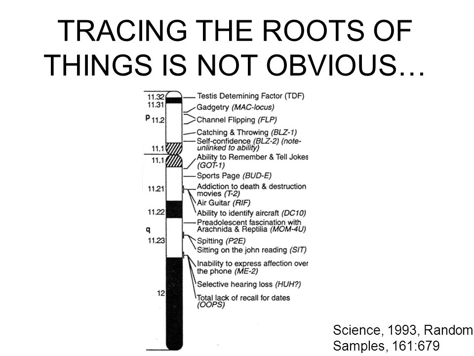 TRACING THE ROOTS OF THINGS IS NOT OBVIOUS… Science, 1993, Random Samples, 161:679