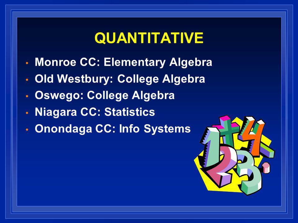 QUANTITATIVE Monroe CC: Elementary Algebra Old Westbury: College Algebra Oswego: College Algebra Niagara CC: Statistics Onondaga CC: Info Systems