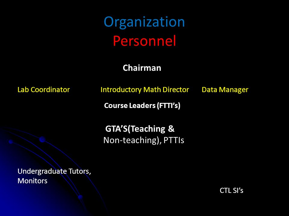 Organization Personnel Chairman Lab Coordinator Introductory Math Director Data Manager Course Leaders (FTTIs) GTAS(Teaching & Non-teaching), PTTIs Undergraduate Tutors, Monitors CTL SIs