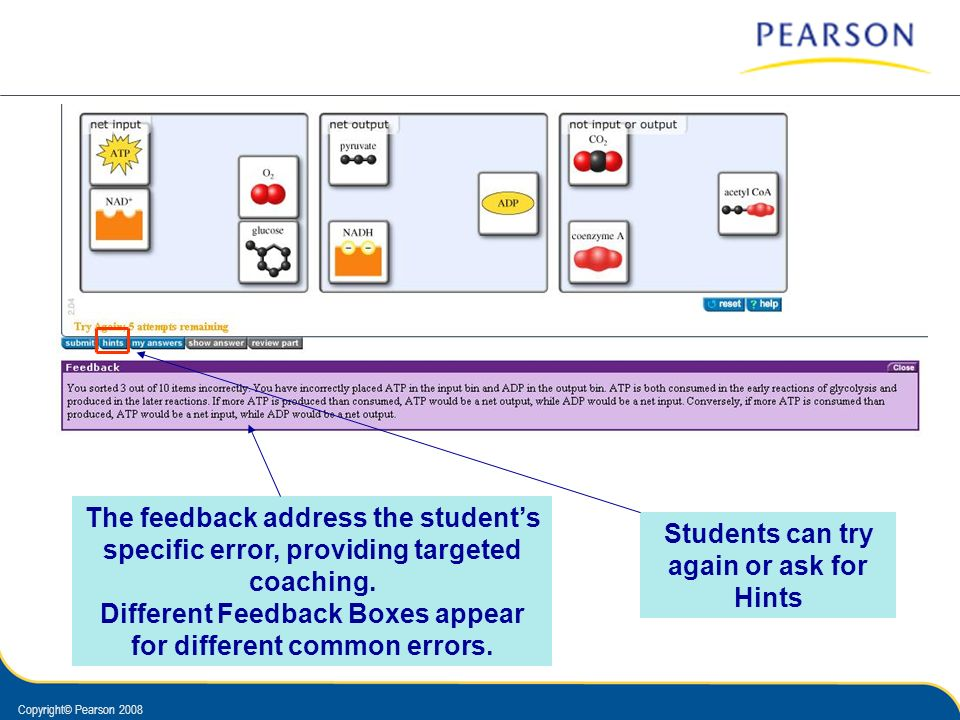 Copyright© Pearson 2008 The feedback address the students specific error, providing targeted coaching. Different Feedback Boxes appear for different c