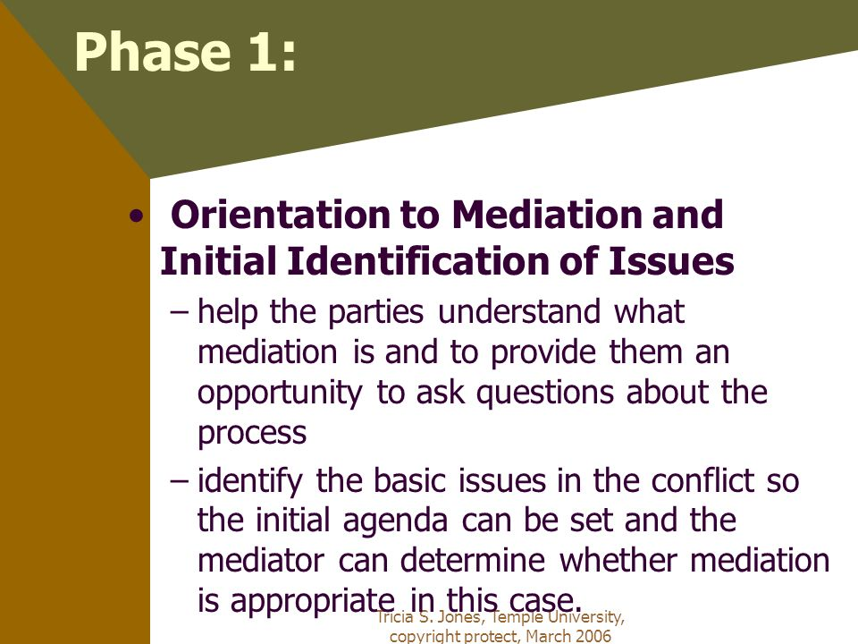 Tricia S. Jones, Temple University, copyright protect, March 2006 Phase 1: Orientation to Mediation and Initial Identification of Issues –help the par