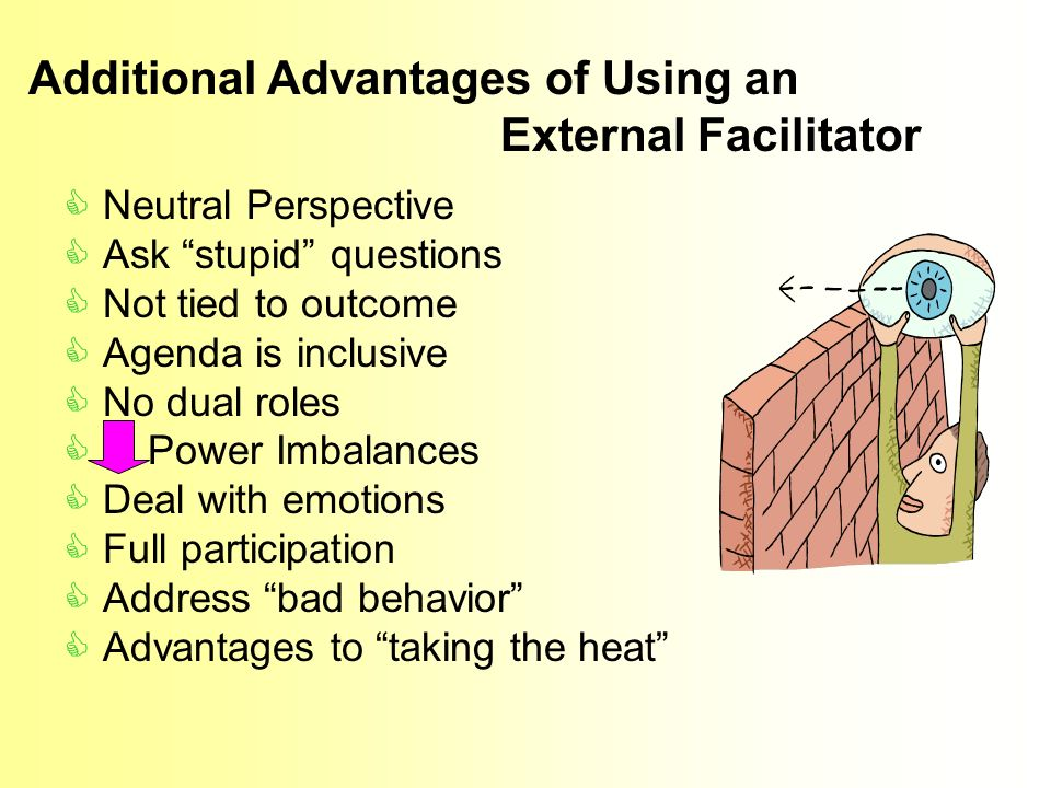 Neutral Perspective Ask stupid questions Not tied to outcome Agenda is inclusive No dual roles Power Imbalances Deal with emotions Full participation Address bad behavior Advantages to taking the heat Additional Advantages of Using an External Facilitator