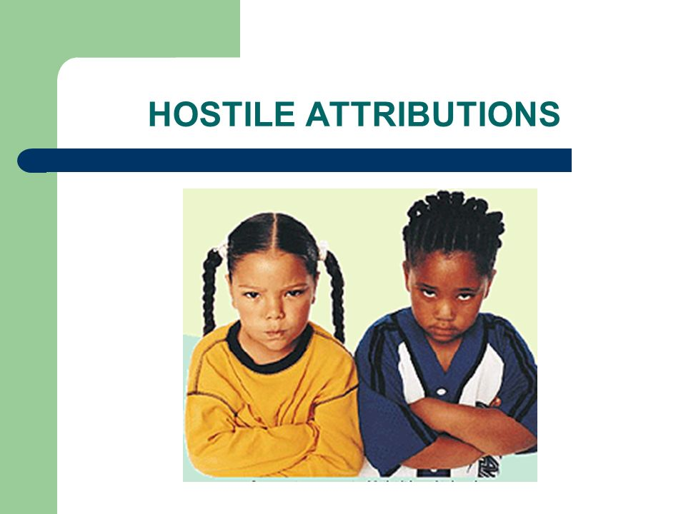 HOSTILE ATTRIBUTIONS