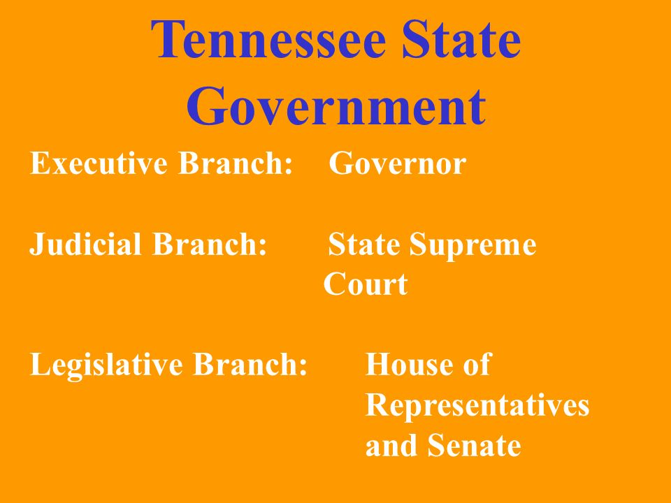 Tennessee State Government Executive Branch: Governor Judicial Branch: State Supreme Court Legislative Branch:House of Representatives and Senate