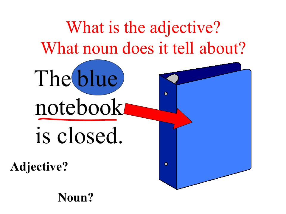 Adjectives answer two questions. HOW MANY. WHAT KIND.