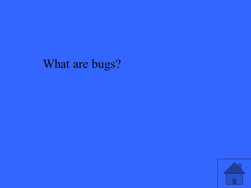 What are bugs?