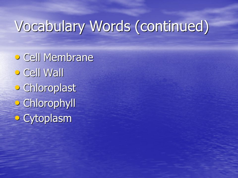 Vocabulary Words (continued) Cell Membrane Cell Membrane Cell Wall Cell Wall Chloroplast Chloroplast Chlorophyll Chlorophyll Cytoplasm Cytoplasm