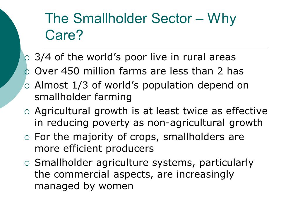 The Smallholder Sector – Why Care? 3/4 of the worlds poor live in rural areas Over 450 million farms are less than 2 has Almost 1/3 of worlds populati