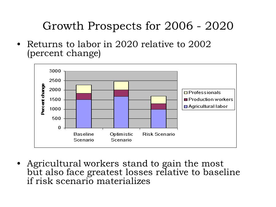 Growth Prospects for 2006 - 2020 Returns to labor in 2020 relative to 2002 (percent change) Agricultural workers stand to gain the most but also face greatest losses relative to baseline if risk scenario materializes