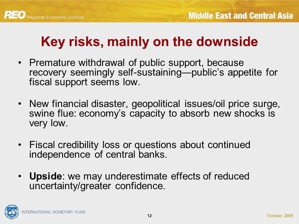 INTERNATIONAL MONETARY FUND October Key risks, mainly on the downside Premature withdrawal of public support, because recovery seemingly self-sustainingpublics appetite for fiscal support seems low.
