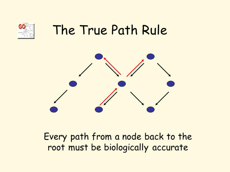 Every path from a node back to the root must be biologically accurate The True Path Rule