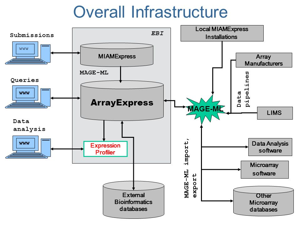 ArrayExpress Other Microarray databases www EBI Expression Profiler External Bioinformatics databases Data analysis www Queries www MIAMExpress MAGE-ML Submissions Array Manufacturers LIMS Microarray software Data Analysis software MAGE-ML import, export Local MIAMExpress Installations Data pipelines MAGE-ML Overall Infrastructure