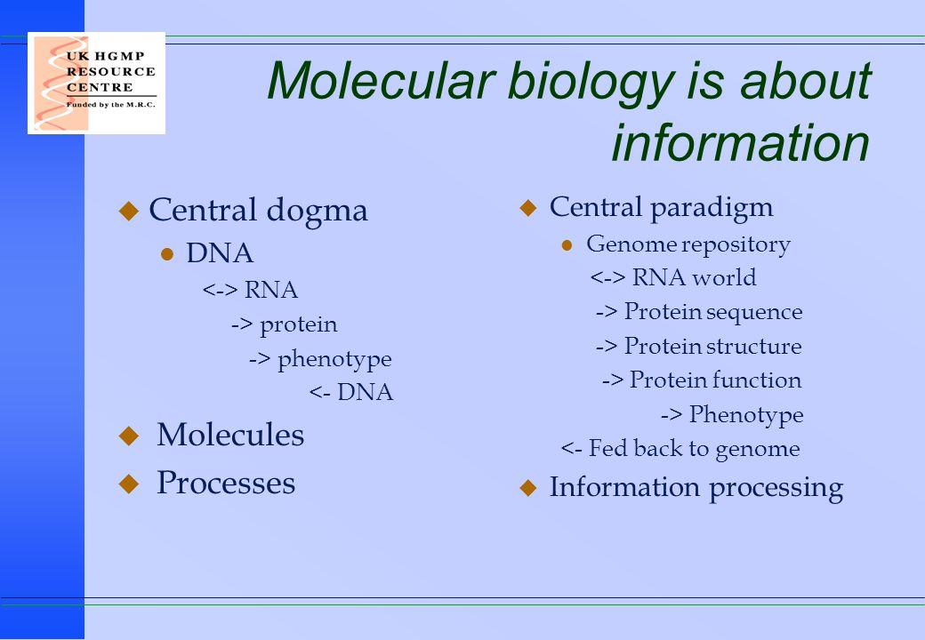 CREDITS u Gary Williams l Menu systems and Genome Web u Geoff Gibbs l Network and systems u Peter Tribble l Web servers, Queues, Treasure