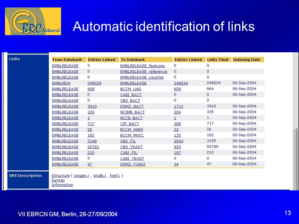 VII EBRCN GM, Berlin, 26-27/09/2004 13 Automatic identification of links