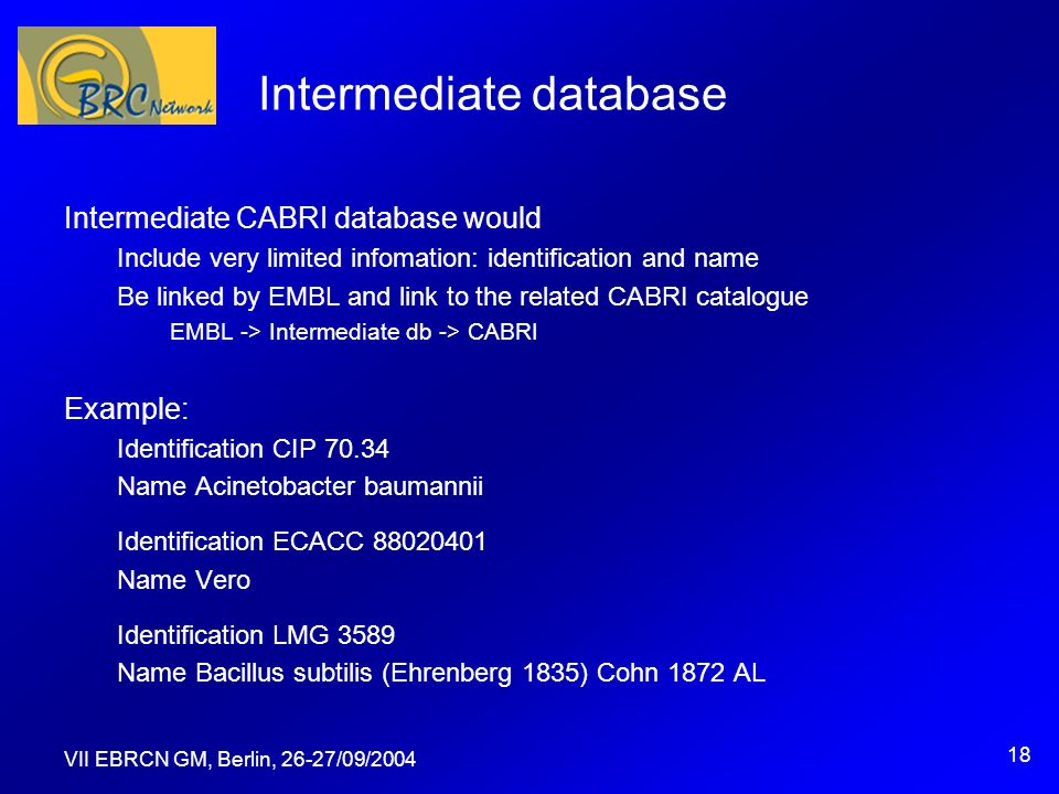 VII EBRCN GM, Berlin, 26-27/09/2004 18 Intermediate database Intermediate CABRI database would Include very limited infomation: identification and nam