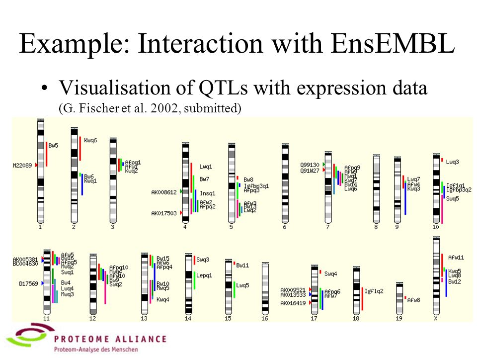 Example: Interaction with EnsEMBL Visualisation of QTLs with expression data (G.