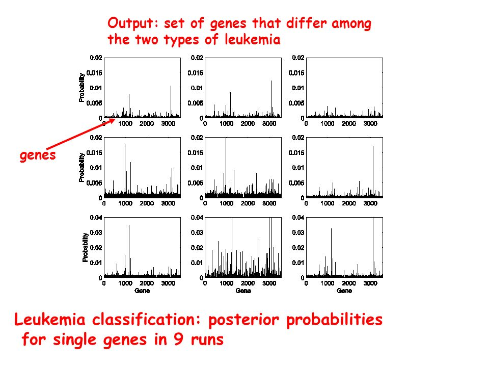 Leukemia classification: posterior probabilities for single genes in 9 runs genes Output: set of genes that differ among the two types of leukemia