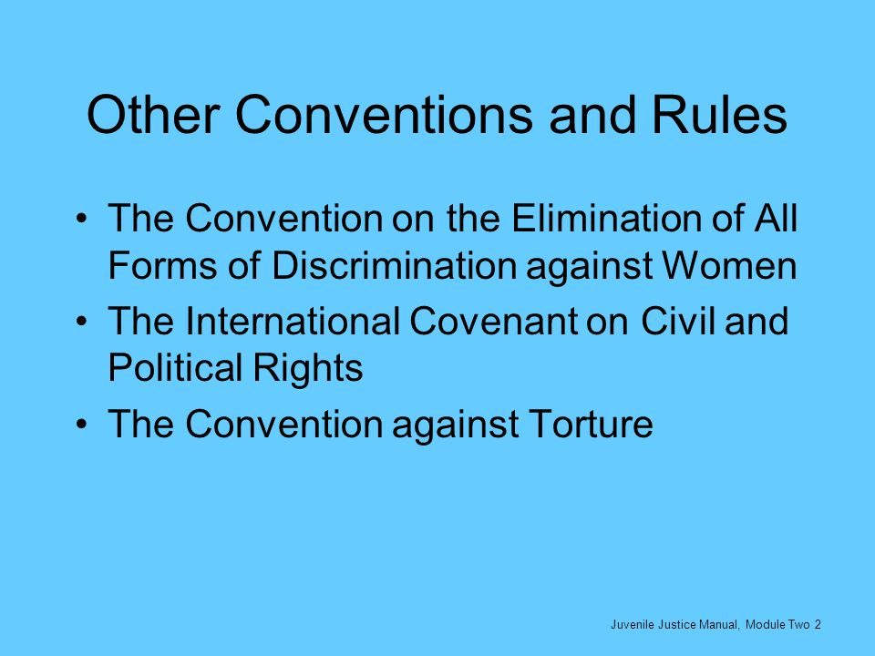 Other Conventions and Rules The Convention on the Elimination of All Forms of Discrimination against Women The International Covenant on Civil and Pol