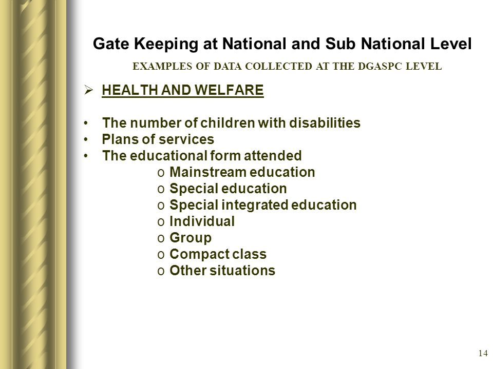 14 Gate Keeping at National and Sub National Level HEALTH AND WELFARE The number of children with disabilities Plans of services The educational form attended oMainstream education oSpecial education oSpecial integrated education oIndividual oGroup oCompact class oOther situations EXAMPLES OF DATA COLLECTED AT THE DGASPC LEVEL