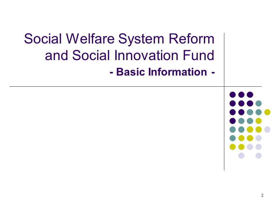 2 Social Welfare System Reform and Social Innovation Fund - Basic Information -