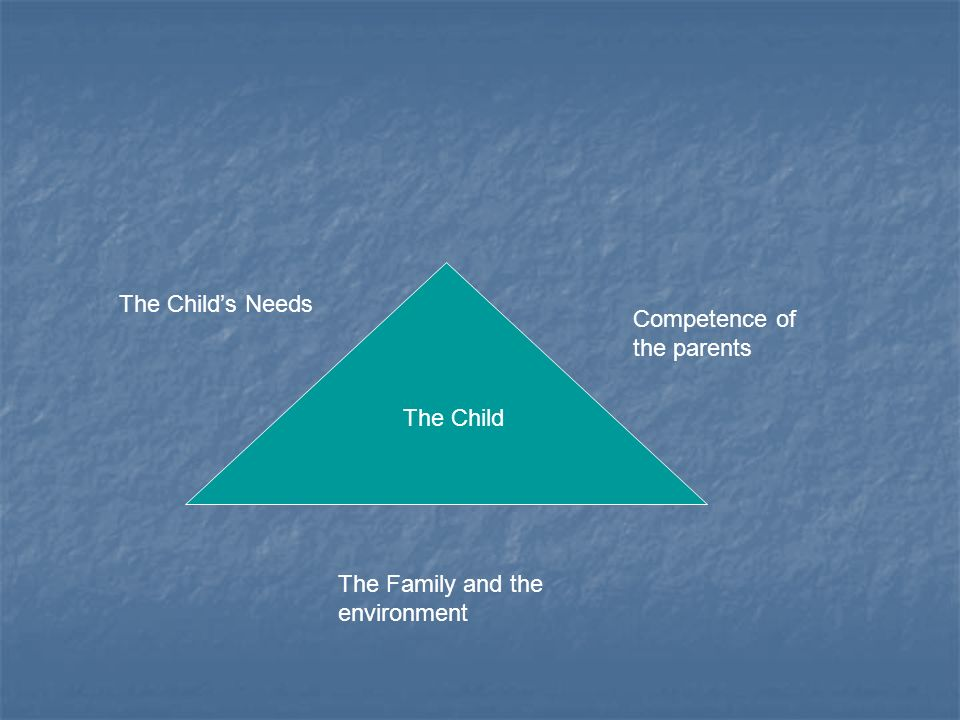 The Child The Childs Needs Competence of the parents The Family and the environment