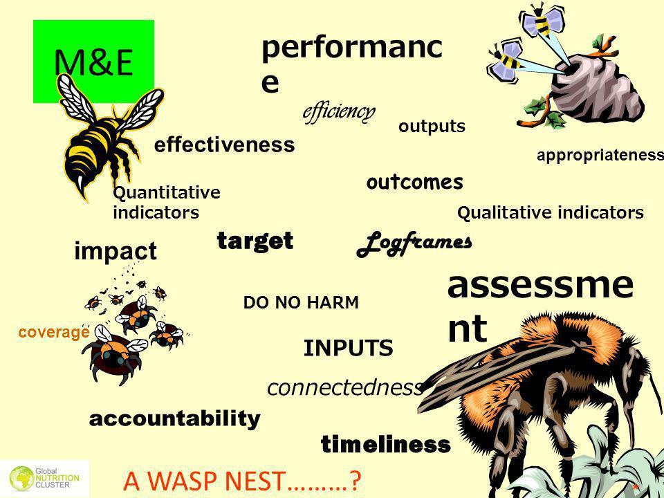 M&E A WASP NEST………? outputs effectiveness performanc e impact outcomes assessme nt target accountability Qualitative indicators DO NO HARM INPUTS time