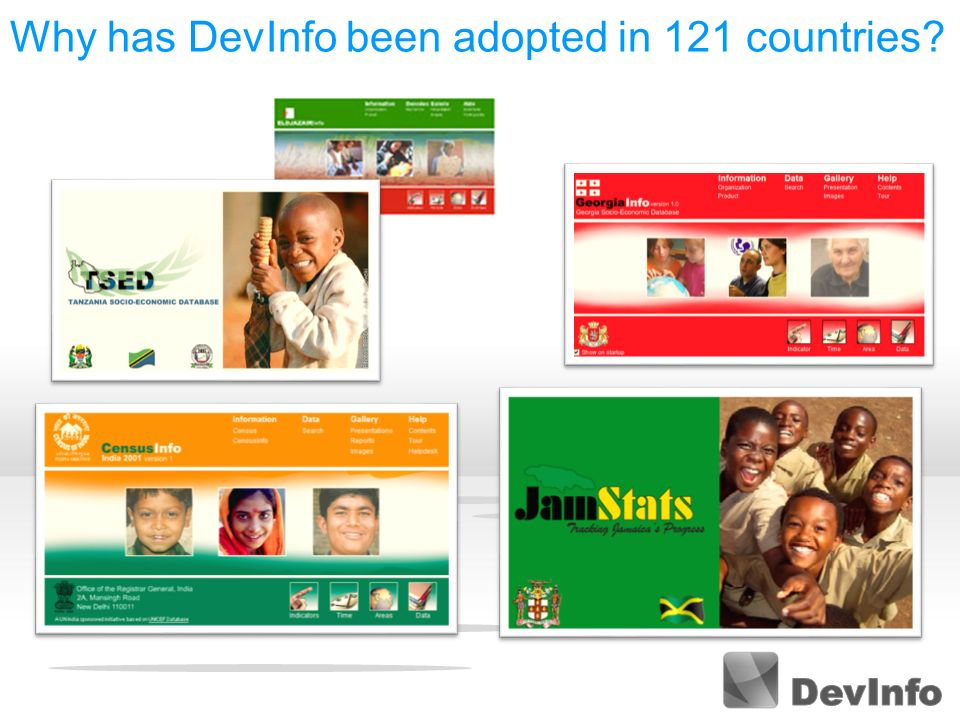 Why has DevInfo been adopted in 121 countries?