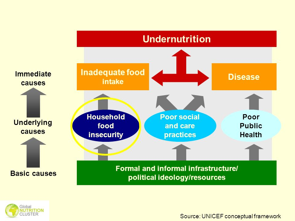 Underlying causes Immediate causes Basic causes Formal and informal infrastructure/ political ideology/resources Inadequate food intake Poor Public He